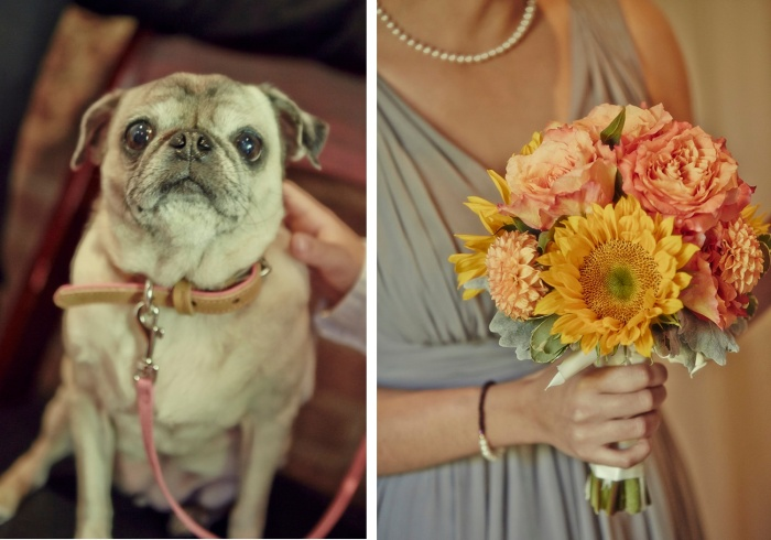 Brooklyn Puppy Love Wedding
